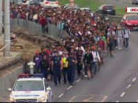 Strategia privind imigratia, adoptata de Guvern. Suma alocata pentru un azilant poate sa ajunga pana la 1.100 de lei/ luna