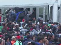 Scene dramatice cu refugiatii blocati intre Croatia si Slovenia. 13.000 de oameni au ajuns in Austria, in acest week-end