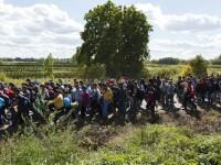 Austria a returnat peste 5.000 de migranti catre statele prin care au trecut, in special Romania si Bulgaria