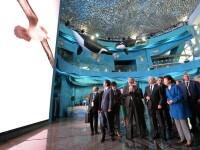 Vladimir Putin a inaugurat un acvariu gigant la Vladivostok, care va gazdui 500 de specii de mamifere
