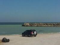 O masina cu numar de inmatriculare MAI a fost fotografiata pe plaja, la Olimp. Cine se foloseste de acest automobil