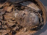 Descoperire fascinanta facuta de cercetatori despre cea mai veche mumie din Europa. Cum ar fi murit Otzi