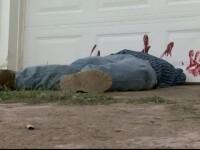 Au crezut că sunt martori la o crimă oribilă, dar era doar o farsă de Halloween