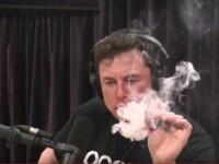 Elon Musk a fumat marijuana în timpul unei emisiuni difuzate în direct. VIDEO