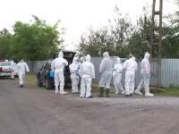 Un nou caz de pestă porcină africană, confirmat în județul Giurgiu