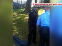 Ce a povestit polițistul local acuzat că a lovit un copil, în parcul IOR