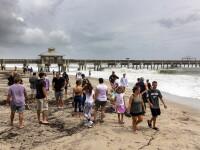 Motivul pentru care sute de persoane s-au strâns pe o plajă, deși scăldatul e interzis