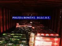 Captură de droguri record în România: 1.480 kg de hașiș și 751 kg de pastile de captagon