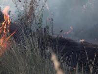 Incendiu de proporții la Ploiești, chiar în apropierea unei rafinării