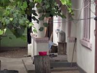 O bătrână din Neamț a fost bătută crunt de nepotul ei, eliberat condiționat din închisoare