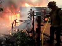 Ninsori, furtuni de foc și zeci de incendii devastatoare. Natura s-a dezlănțuit pe Coasta de Vest a SUA