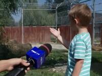Ultimul weekend de relaxare înainte de începerea școlii. Părinții și copii au luat cu asalt grădinile zoo și parcurile