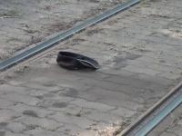 Un bărbat a scăpat în mod miraculos cu viață după ce a căzut sub tramvai în Arad. Cum a fost posibil