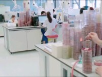 Sute de firme își testează pentru Covid-19 angajații care se întorc din concediu ori au lucrat de acasă