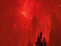 Dezastru în California în urma incendiilor de vegetație. Aproape toți locuitorii unui oraș au fost evacuați
