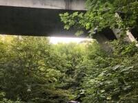 Accident provocat de un adolescent de 16 ani, din Vâlcea. A zburat de pe pod cu mașina de la 20 de m înălțime