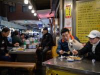 Președintele Coreei de Sud vorbește despre interzicerea consumul de carne de câine. Ce părere au oamenii
