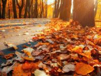Vremea azi, 20 octombrie. Soarele prinde curaj, dar nu pentru multă vreme