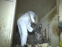 O pensionară din Târgovişte şi-a umplut apartamentul de 4 camere cu gunoaie până la tavan