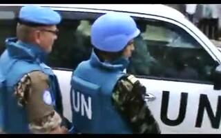 observatori ONU