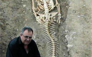 schelet sirena Bulgaria