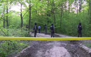 politie in padure