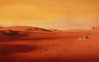 """""""Ar fi existat viață pe Marte"""""""