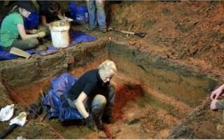 Descoperire macabră în curtea unei școli din Florida