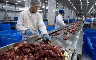 producator carne