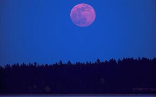 super luna roz 2021