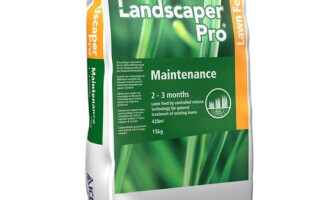 (P) Îngrijirea gazonului   De la plantare, la fertilizare şi scarificare