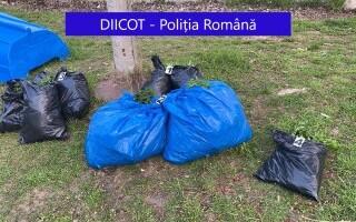 Doi bărbați din Galați, prinși când încercau să arunce trei saci cu cannabis în Dunăre