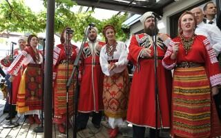 Vladimir Putin, Karin Kneissl, dansat, nunta,