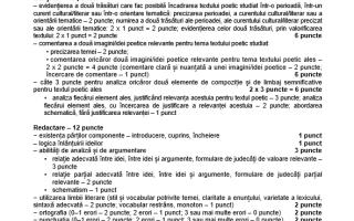 Subiecte și barem de corectare BAC 2018 la Limba și Literatura Română