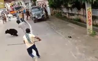 VIDEO. Momentul în care un bărbat e atacat de un urs într-un cartier rezidențial