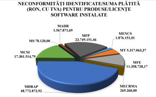 grafic achizitii software