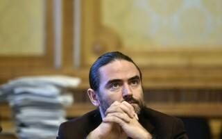 Liviu Plesoianu, deputat PSD