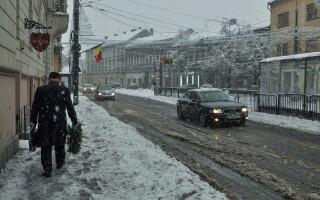 Ninsoare in Timisoara