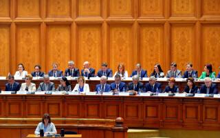 Cabinetul Dancila in Parlament