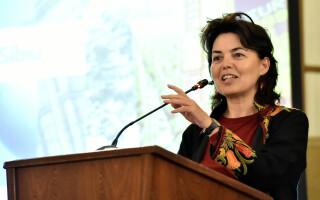 Angela Cristea, ambasador Comisia Europeana in Romania