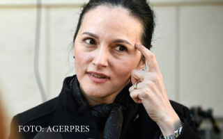 Alina Bica, fost sef al DIICOT