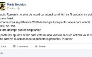 postarea facebook Sabina Maria Nedelcu