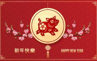 Anul Porcului