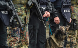 caine al politie germane
