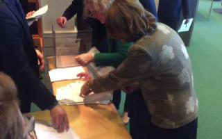 Maria Grapini la numararea voturilor