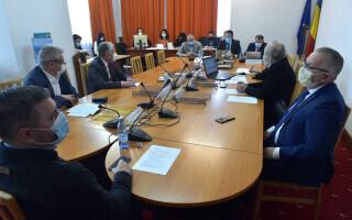 parlamentari, senat, buget, comisie