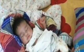 Fabrici de bebelusi - 2