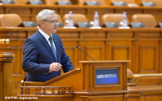 Liviu Dragnea in Parlament