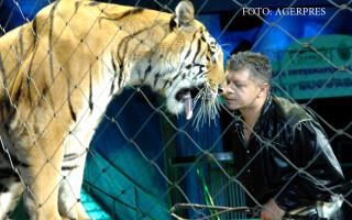 dresura cu animale la circul Globus