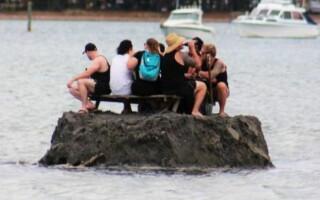 noua zeelanda, insula de baut